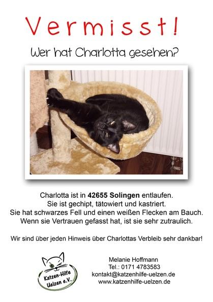 Charlotta wird vermisst