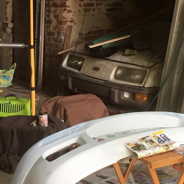 zwei Kitten huschen unters Auto